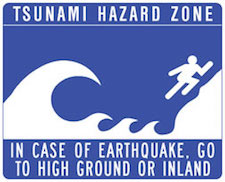 Christina_Dodd_Tsunami_Warning